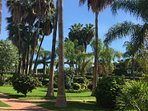Stunning gardens at Oasis