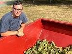 Gérald - grape harvest 2018