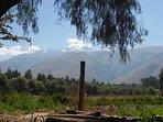 Mi comunidad Collpapampa- La Floresta. ¡Qué hermosa la cordillera!