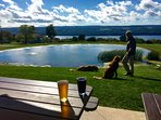 Our area is pet friendly. Our dogs love to visit local wineries/breweries!