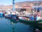 Muelle pesquero , con su cofradía donde podrá disfrutar de un buen pescado fresco