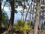 proche du lac de carcans maubuisson ( 5 mn à vélo par piste)