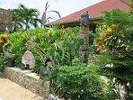 More Tropical Garden