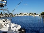 Fishing charters and snorkel tours from the marina