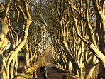 we are near to the Dark Hedges (of Game of Thrones fame)