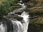 Torc Mountain stream Killarney