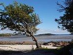 End beach, Kippford. A favourite walk along the coastal Rough Firth path leads here