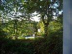 Summer Season with lots of surrounding greenery