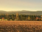 Autumnal view over Strathmore towards Sidlaw Hills