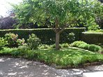 Parkside's front garden is small but perfectly formed!