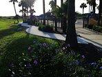 Walkway around pool to beach