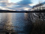 Loch Kinord. Approx 4 miles east of Ballater. Nature reserve so take a camera. Many different walks.