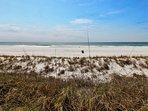 Fantastic Beachfront Property