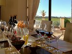 Private Wine Tatsing at the villa - guide by Professional Sommelier