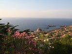 vista dal terrazzo dello splendido Golfo di Costa Paradiso