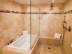 master bathroom with air jet tub and walk in shower
