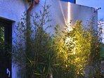 vue du domaine taino : jardin