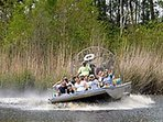 Gator Farm, swamp tours & Airboat rides.   35 minutes from Cottage.