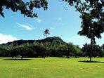 Stroll through Kapiolani Park on your way to Diamond Head