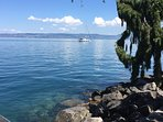 By the Lake in Evian .