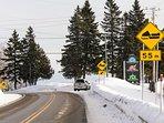 Provincial snowmobile trail 300 meters away