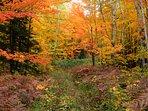 private hiking trail in autumn
