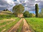 Casa Vacanze Fusina - Dogliani - Territorio