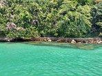 Águas cristalinas em nossa expedição na Ilha da Gipóia em Angra dos Reis.