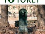 I  'Toret' , le fontanelle verdi con testa di toro tipiche di Torino