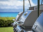 Love to grilingl out? Try one of our 3 large gas grills close to the ocean. Fabulous setting.
