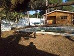 piscina privada. Césped recien plantado en Abril 2019