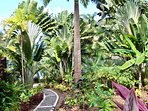 Botanical garden and pathway to Sea