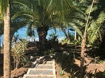 Botanical pathway leading to lower decks and sea