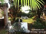 jardin lodge ylang ylang location la liane de jade saint paul