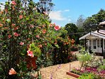 Walk through the garden, past the main bungalow, to reach the 2-bedroom guest cottage