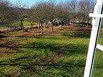 Jardín castaños privado