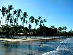 Famous Tamarindo Beach