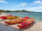You can rent Kayaks and SUPs at Sapphire. (You can rent chairs and snorkel gear but we have those!)