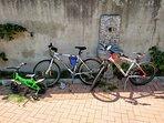 Biciclette a noleggio gratuito