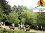 Actividades cercanas: Parc Animalier