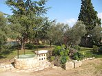 Jardin de Perle de Provence