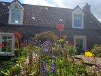 Sunny front garden