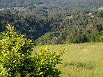Vistas a la montaña y al monasterio de Carboeiro