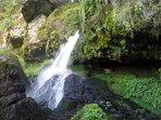 Baignez-vous dans les gouilles et cascades de la rivière JiouJiou sous le Domaine de l'Ours