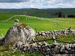 L'Aubrac, un site naturel préservé d'exception