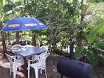 jardin avec sa table et son barbecue