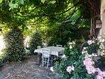 Petit déjeuner entre vigne centenaire et jasmin