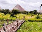Jardin et petit pont du Papayer Ecolodge
