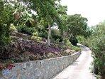 Bellissimo muro di pietra nativo lungo vialetto