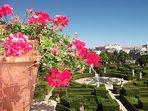 Discover the Baroque gardens ,Paco do Jardims in Castelo Branco,a real treat for garden lovers.